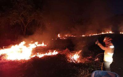 Incendios forestales arrasaron con sientas de hectáreas en el Tolima, durante el fin de semana