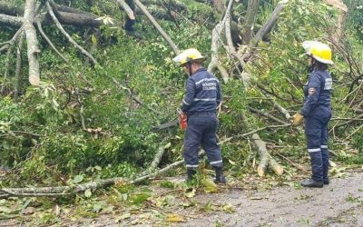 Autoridades atendieron emergencias ocasionadas por intensas lluvias, la noche anterior